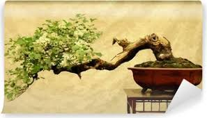 Bonsai Wall Murals The Fascinating World Of Nature Pixers We Live To Change