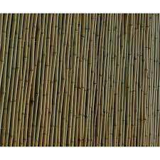 Eden 1 8 X 1 5m Natural Bamboo Premium Screen Fencing Bunnings Warehouse