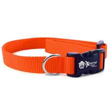 Universal Dog Training Collar No Holes Extreme Dog Fence