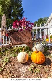 Yard Decoration Pumpkins Flowers Wooden Wheelbarrowsmall Stock Photo Edit Now 766274344