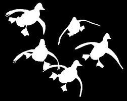 Duck Bird Waterfowl Farm Car Laptop Bumper Window Vinyl Decal Sticker 01397