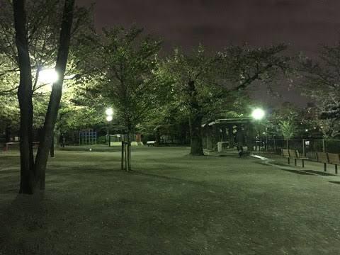 """「夜 公園 画像」の画像検索結果"""""""