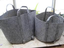 diser grow bags an alternative
