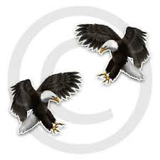 Eagle Stickers Decal Attacking Bald Eagle Adhesive Vinyl 4 Sizes Available Ebay