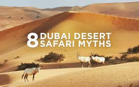 dubai desert safari myths