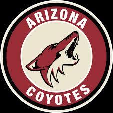 Arizona Coyotes Circle Logo Vinyl Decal Sticker 5 Sizes Sportz For Less
