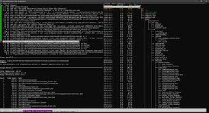 env local php in docker image