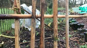 3 Cheap Fence Ideas