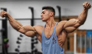 the 11 best bicep and tricep exercises
