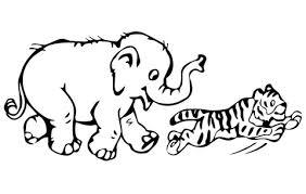 Tijgerwelp Speelt Met Baby Olifant Kleurplaat Gratis Kleurplaten