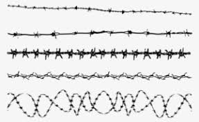 Barbed Wire Png Free Hd Barbed Wire Transparent Image Pngkit