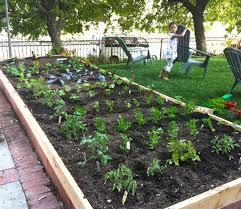 veggie garden layout ideas outdoor