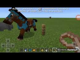how to dye horse armor 1 minecraft