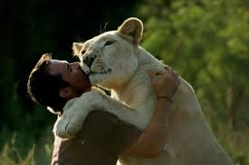 South Africa's Lion Whisperer: How He Became One & Where To Visit Him
