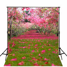 Vinylbds 10ft الربيع مشهد خلفيات للتصوير الفوتوغرافي الوردي زهرة
