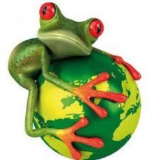 Día Internacional de la Diversidad Biológica - Recíclame