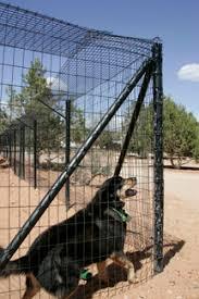 Dog Proof Fence Ideas Best Friends Animal Society