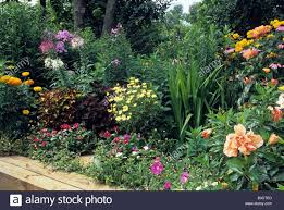 image result for perennial border for