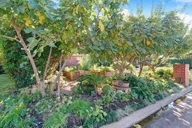 edible yard draws fans and flak in