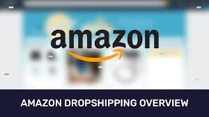 amazon dropshipping full overview