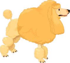 Fluffy Yellow Poodle Clip Art at Clker.com - vector clip art ...