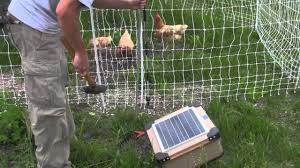 How To Install An Electric Poultry Fence Video Youtube