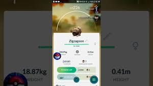 Pokemon Go - Gen 3 - Zigzagoon - YouTube