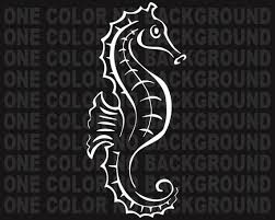 2 Seahorse Decals Stickers Bogo For Car Truck Bumper Window Etsy