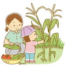 とうもろこしを収穫するこどものイラスト(ソフト) | 子供と動物の ...