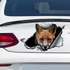 Amazon Com Red Fox Car Decal Car Decoration Red Fox Sticker Vinyl Sticker For Cars Windows Walls Fridge Toilet And More 11 Inch Home Kitchen
