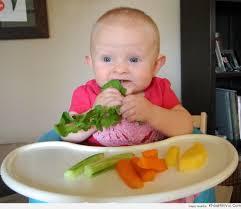 Chăm sóc em bé - Cách nấu cháo cho bé ăn dặm 6 tháng tuổi và thực đơn giàu  dinh dưỡng | Dinh dưỡng, Nâu, Nhi khoa