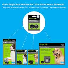 6v Lithium Batteries Pack Of 2 Premier Pet