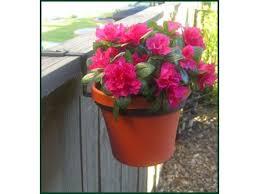 8in Fence Pot Holder Railing Planter Boxes Pots Planters