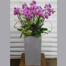 orchid design extra large flower