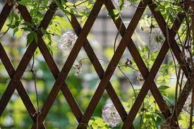How To Stop Burglars From Climbing A Fence Full Guide Security Latest