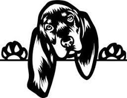 Coon Dog Window Decal Ebay