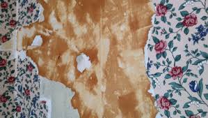 how to remove wallpaper with vinegar