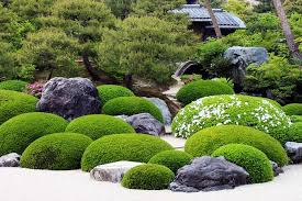 start from scratch with japanese garden