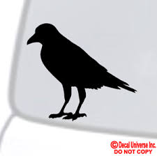 Crow Vinyl Decal Sticker Car Window Wall Bumper Black Bird American Cute Raven Ebay