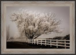 Millwood Pines Frosted Tree And Fence Framed Acrylic Painting Print On Canvas Wayfair