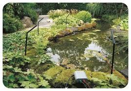 Garden Pond Protector Electric Fence Kit Stops Herons Cats Birds Fish Koi