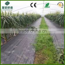 garden ground cover fabric weed control