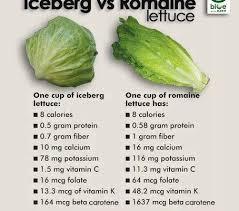 romaine vs iceberg lettuce which is