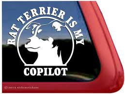 My Rat Terrier Is My Copilot Dc231cop High Quality Etsy