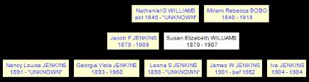 Susan Elizabeth WILLIAMS 1870-1907