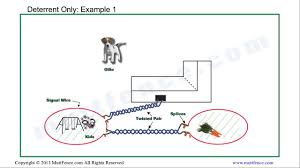 Diagram A Diagram To Wire A Electric Dog Fence For Full Version Hd Quality Fence For 1tonguediagram Museodiocesanobrescia It