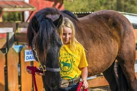 Nine-year old horse whisperer? Covington's Ava Bell tames a mustang    Horses, Covington, Mustang
