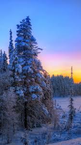 sun winter snow beautiful landscape