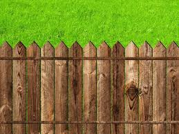 Wooden Fence Against The Green Grass Stock Image Colourbox
