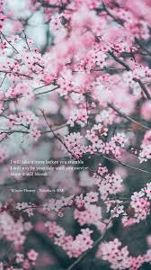 bts lyrics ⁷ a hope it will bloom winter flower younha